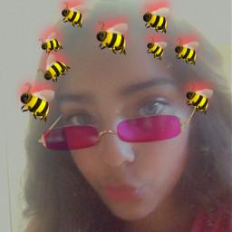 bee freetoedit srcbethequeenbee bethequeenbee