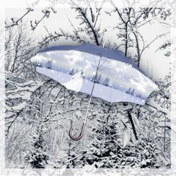 white whitechristmas wolf howl wolfhowling ircundertheumbrella freetoedit