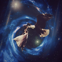 beauty eagle space magic night sky freetoedit