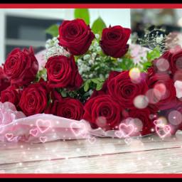 beautifulrose