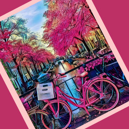 paris bike bikerides love pink cherryblossoms interesting art photography summer travel nature sky city lifestyle pinkbike blueskyandclouds happy pretty buildings smalltown bigcity citylife shopping girlsnight