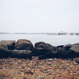 freetoedit water yatch fall autumn leaves sky sea coast shoreline mar oceano saagar