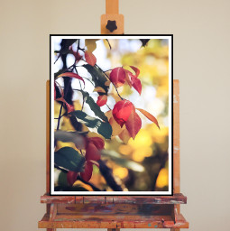 autumn autumnmoodboard autumnleaves autumnflatlay freetoedit ircinnerartist innerartist
