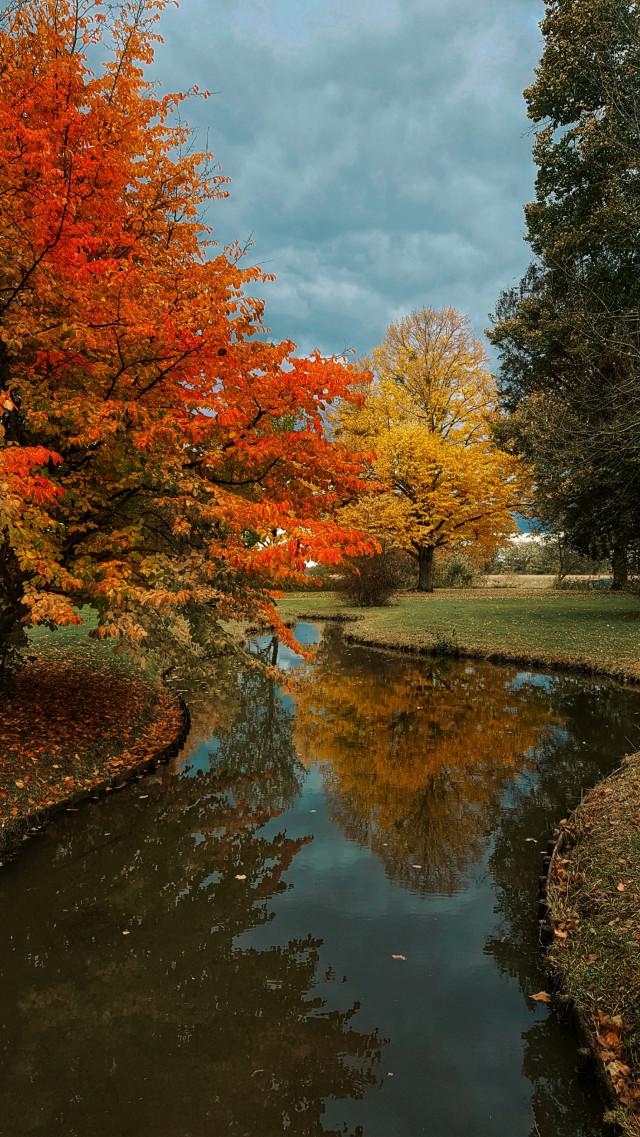 #freetoedit #fall #autumn #photography #park #nature