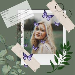 unsplash aesthetic freetoedit nature leaves butterflies