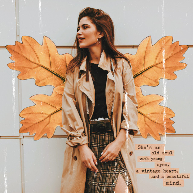 #freetoedit #fall #fallleaves #fallleaf #fallseason #orangeasthetic #creative #fallaesthetic #aesthetic #wing #wings