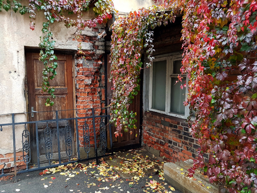 #oldhouse #autumn #autumncolors #background  #freetoedit