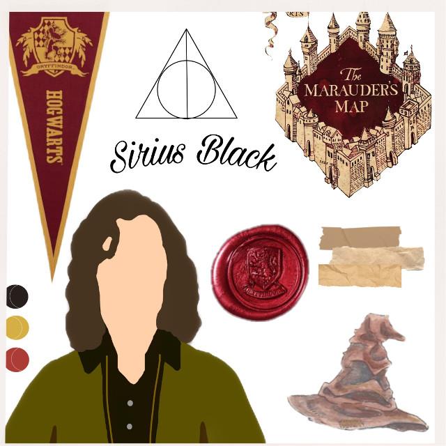 "Name: Sirius Black ""Padfood"" Sibling: Regulus Black Parents: Orion Black and Walburga Black From: England  House: Gryffindor  Friends: James Potter, Remus Lupin, Peter Pettigrew Blood status: Pure-blood #siriusblack"