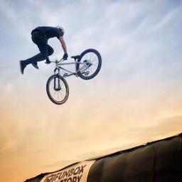 freetoedit bmx jump bike sport redbull