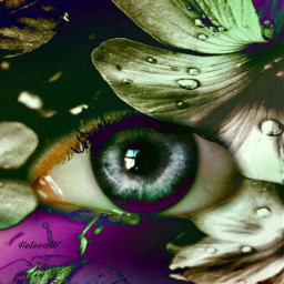 eye eyeart colored colorful face freetoedit