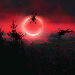 red spider spiders scary nature background redaesthetic blood moon bloody spooky halloweenspirit halloween halloweencreatures freetoedit