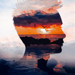 doubleexposure picsartstudio picsart makeawesome forestpark flowers sunset sky cielo summer likeforlikes likeforfollow freetoedit