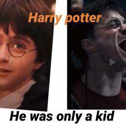 harrypotter harry potter potterfamily harrypotterfirstyear harrypotterlastyear theboywholived hewasjustakid griffindor hogwarts danielradcliffe
