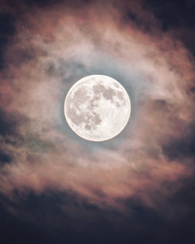 #moon #fullmoon #nature #nightsky #midnightmoon #moonlight #cloudynight #bluemoon #silveryglow #blueish #fullmoonritual #moonlovers #nightphotoshoot #moonphotography