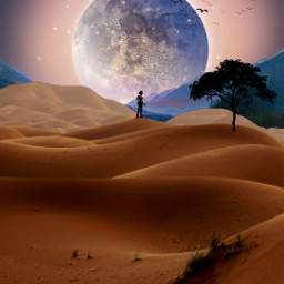 freetoedit nightsky desertlife