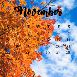 leavesfall freetoedit srcnovembercalendar novembercalendar