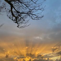 beautifulsky sunsetsky sunrays sunsetview settingsun scenery cloudysunset freetoedit