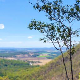 nature landscape freetoedit