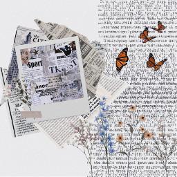 hithere aesethic butterflies aestheticvintage cute aestheticretro retro newspaper newspaperaesthetic rippednewspaper flowers aestheticflowers ilysm haveabeautifulday ishouldstop byeboo freetoedit