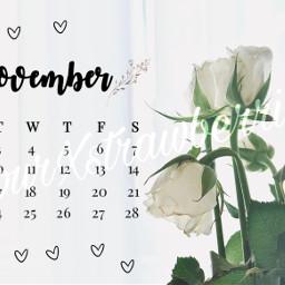 unsplash calendarchallenge freetoedit srcnovembercalendar novembercalendar