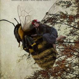 bee destination. unibrow_queen freetoedit destination