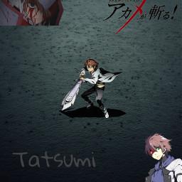 akamegakill tatsumi freetoedit