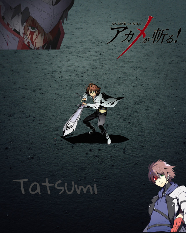 #akamegakill #tatsumi