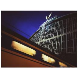 amsterdam centralstation