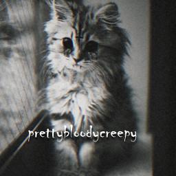 creppy freetoedit