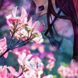 freetoedit cherryblossom girlinkimono japaneseflower japanesegirl
