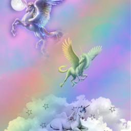 unicorn rainbow beutyful freetoedit