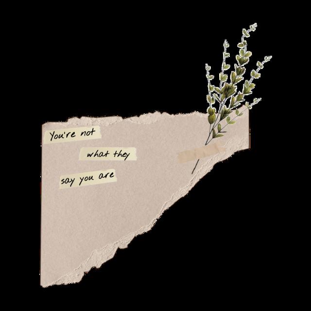#paper #aesthetic #asthetic #vintage #aestheticvintage #cute #book #rippedpaper #ripped #rippednewspaper #newspaper #vintageaesthetic #aestheticsticker #sticker #astheticsticker #ateez #sad #love #interesting #kpop #bts #straykids #txt #twice #blackpink