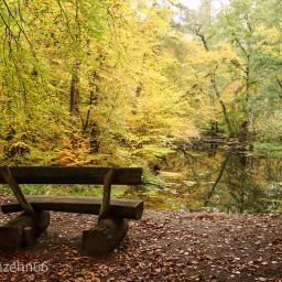 freetoedit nice autumn germany nature