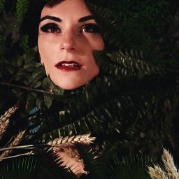 beauty photography foliage myedit model freetoedit