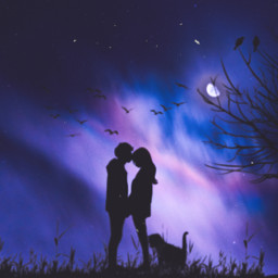 love couple tree cat moon silhouette picsart heypicsart awesome nice freetoedit
