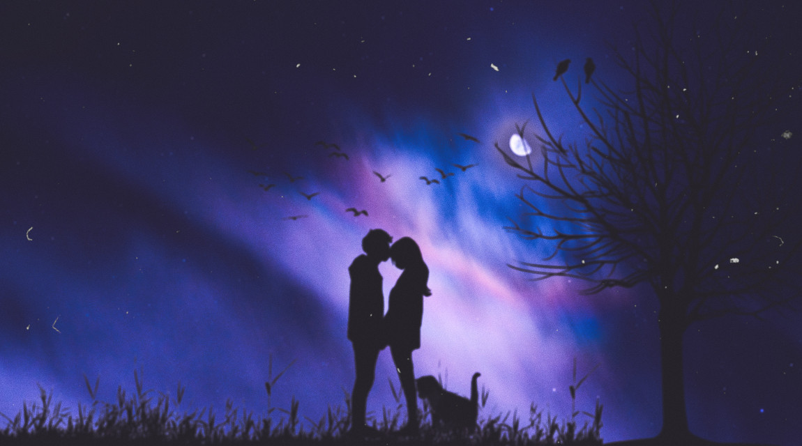 #love #couple #tree #cat #moon #silhouette #picsart #heypicsart #awesome #nice