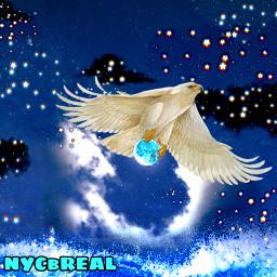 unsplash blackclouds blackcloudschallenge night sky nightsky moon hawk flying flyinghigh useeit splash wave carry carrying nycbreal freetoedit spreadyourwings srcblackclouds