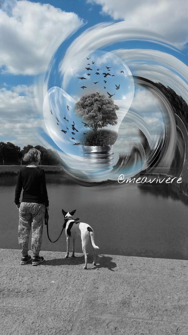 #blackandwhite #colorsplasheffect #colorsplash #landscape #clouds #tree #birds #nature #people #petsandanimals #captured #urban #clipart #editedbyme #emotions #horizon #fantasy #capture #beautifulday #earth #climate #blue #sky #bluesky