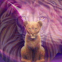 lions fatherandson freetoedit