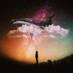 whale clouds silhouette galaxy freetoedit