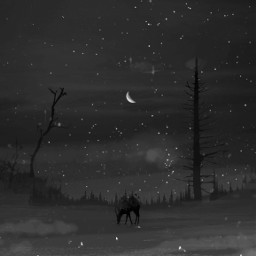 freetoedit rural country fields deer black white trees night moon peaceful prose