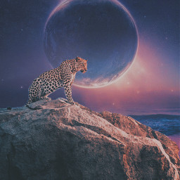 freetoedit myedit editbyme picsartedit picsarteffects manipulation animaleye animals planet