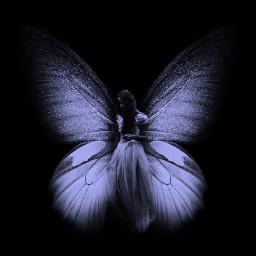 butterflywings artistic editbyme multilayer freetoedit
