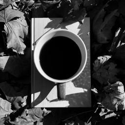 coffee fall book minimal autumn blackandwhite blackandwhitephotography