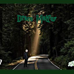 dracomalfoy dracomalfoyaesthetic draco forest freetoedit ircgorgeousforest gorgeousforest