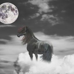 horse moon myartwork clouds blackandwhite freetoedit