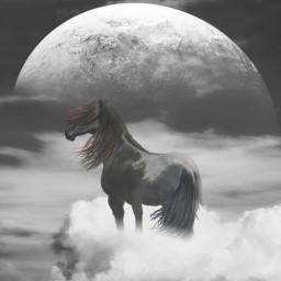 remixed madewithpicsart blackandwhite horse planet freetoedit
