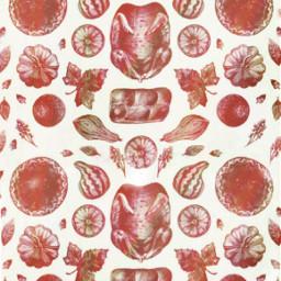 background holidaywallpaper wallpaper turkey turkeyday autumn autumncolors freetoedit