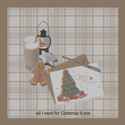 xmas plaid winter christmas athome freetoedit