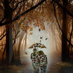 fantasyart makebelieve myimagination becreative makeawesome autumn fallcolors leaves couple stickers picsarteffects heypicsart picsartmaster masteredit myedit madewithpicsart freetoedit